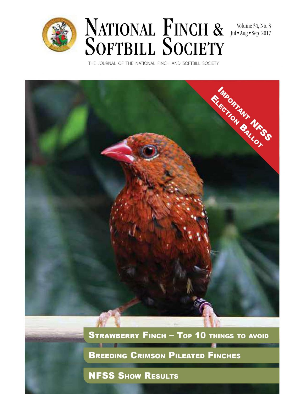 Home - NFSS | National Finch & Softbill Society