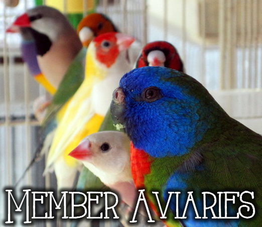 Member Aviaries