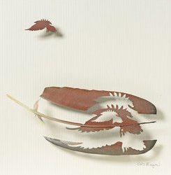 ©Chris Maynard www.featherfolio.com