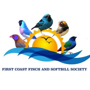 Affiliated Clubs - NFSS   National Finch & Softbill Society